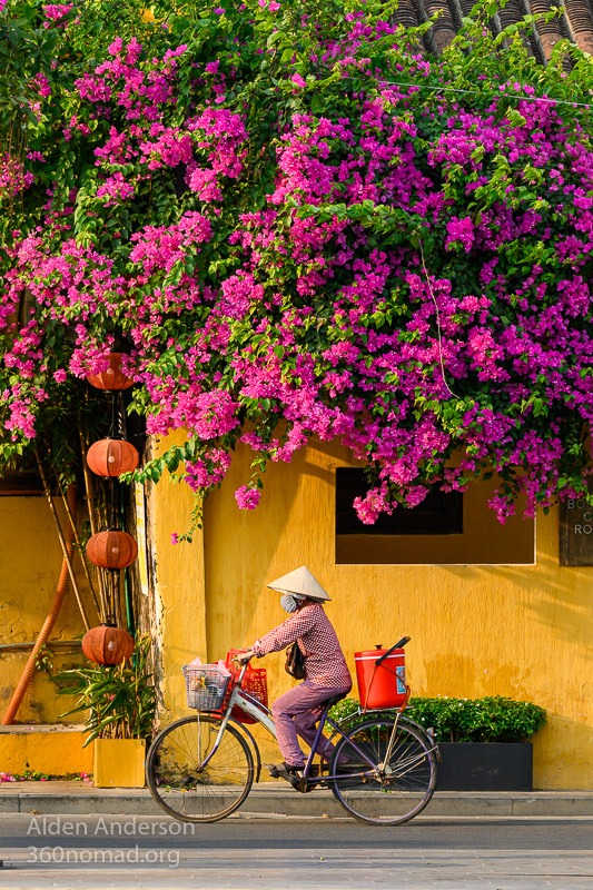 Colors of Hoi An 1 Thuy bougainvillea