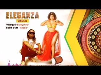 Yanique Curvy Diva Ft. Solidstar – Eleganza, MUSIC: Yanique Curvy Diva Ft. Solidstar  – Eleganza, 360okay