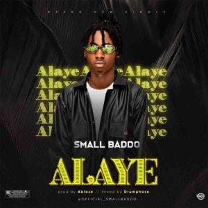 Small Baddo – Alaye, MUSIC: Small Baddo – Alaye, 360okay