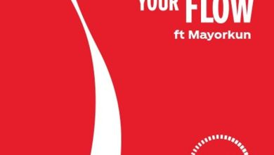 Mayorkun – Ginger Your Flow, MUSIC: Mayorkun – Ginger Your Flow, 360okay
