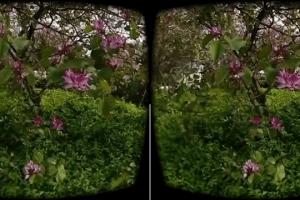 3D framegrab from a Vuze Camera sample video