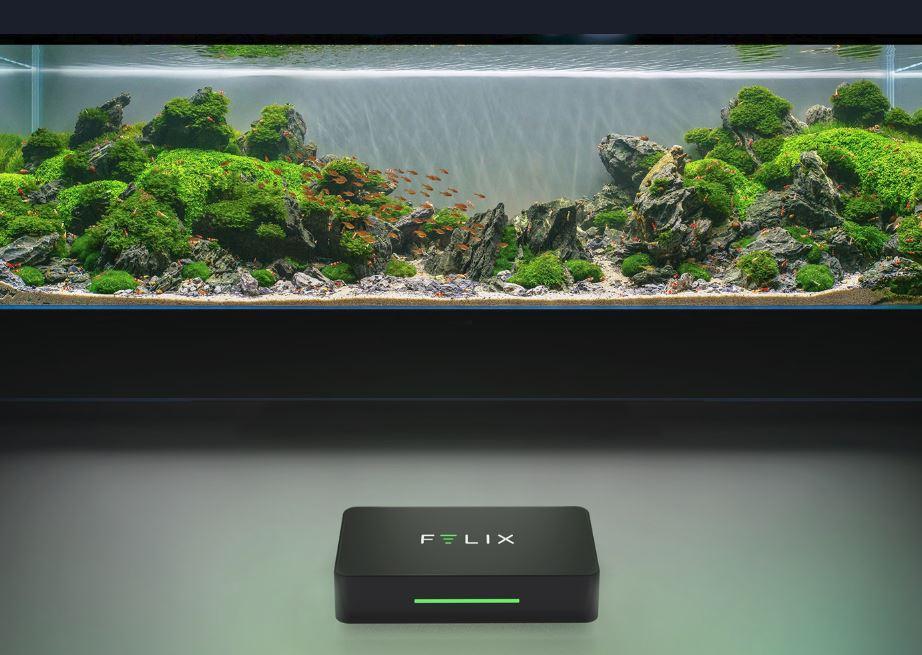 Monitor your aquarium in 360 with Felix Smart