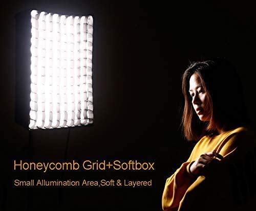 Optional gridded softbox with eggcrate for the RX-12T