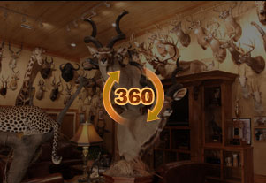 Trophy Room Design Services Top Taxidermy Company In Usa