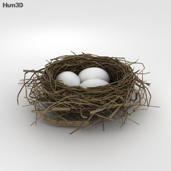 Bird Nest 3D model - Plants on Hum3D