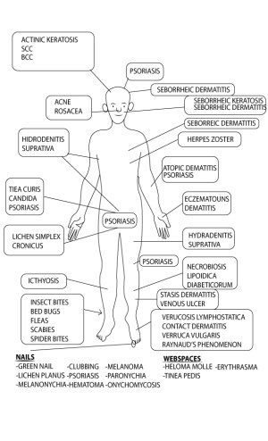 Anatomy Based Differential Diagnosis of Wound Conditions