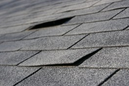roofing peeling up - roof repair