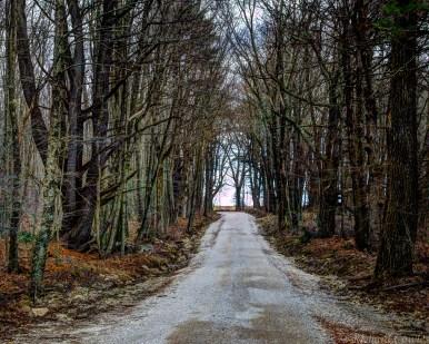 Backroading in the Berkshires