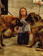 dogshow1.2