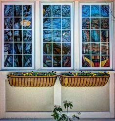windowboxes1.3