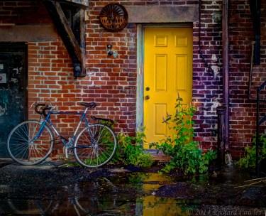 yellowdoor1.2