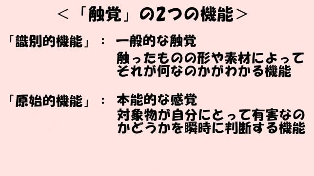 触覚について(1)