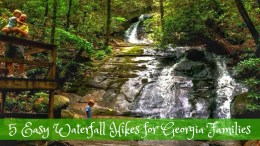 Fall Branch Falls georgia waterfall hikes