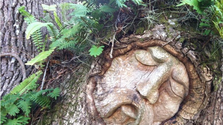 Tree Spirits of St. Simons Island Georgia