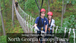North Georgia Canopy Tours