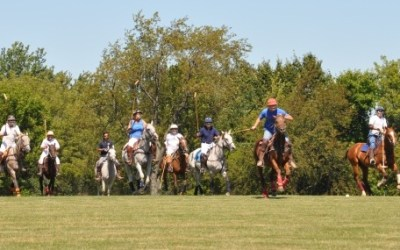159.  Barrington Hills Polo Part II