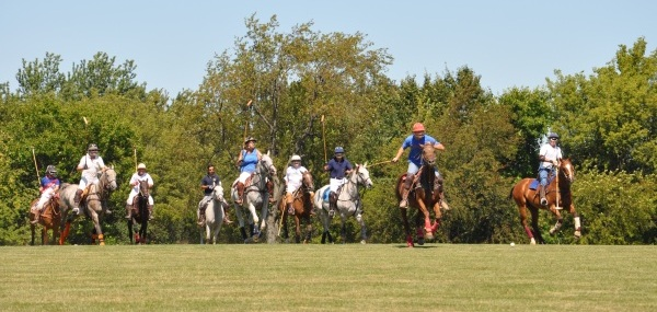159.  Barrington Hills Polo Part II