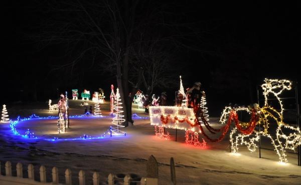 Holiday Lights Display on Old Oak in Barrington, Illinois