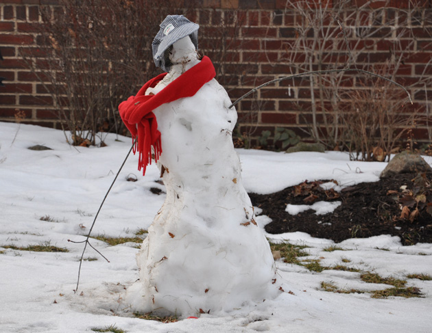 Post - Snowman Contest Winner