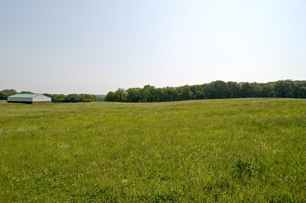 Post - 8 Moate - 5 Acre Views