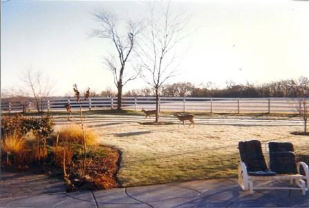 Post - 8 Moate - Deerscape