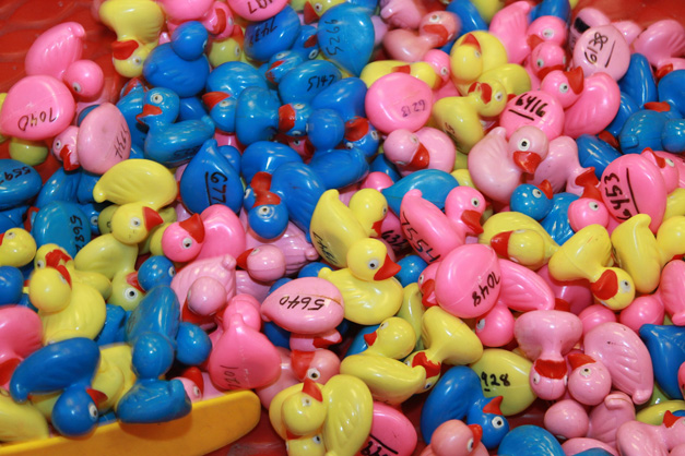20th Annual Duck Race & Pool Party - Photograph Courtesy of Bob Lee