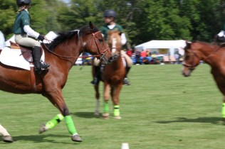 Post - LeCompte Kalaway Trail Owners Cup Polo Tournament Barrington Hills 2014 - 16