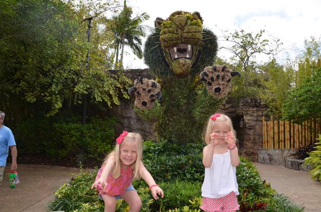 ROAR! - Busch Gardens, Tampa Bay, Florida - Photo Submitted by Dawn Van Ryn