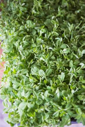 Post - Smart Farm - Farm to Table Dinner 2015-21