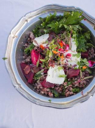 Post - Smart Farm - Farm to Table Dinner 2015-76