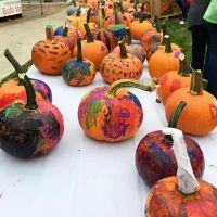 noondaily-painted-pumpkins-at-scarecrow-fest