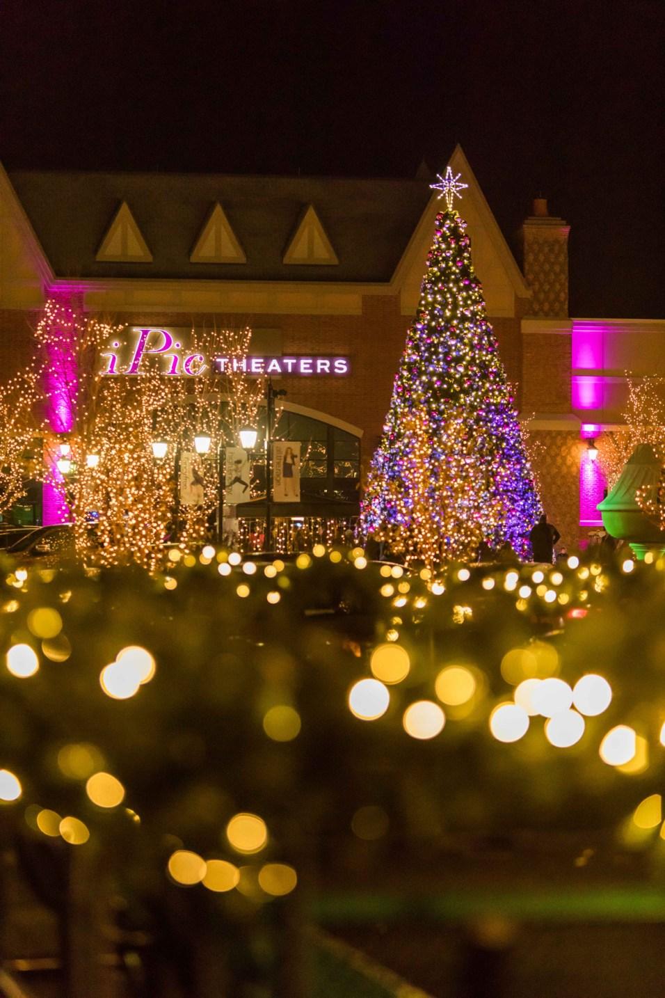 365 - Arboretum of South Barrington Holiday Tree