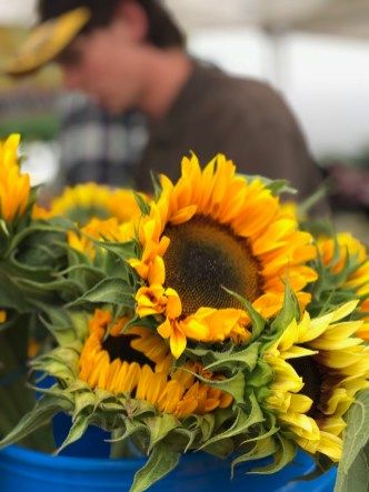 Barrington Farmers Market 2018 - 1