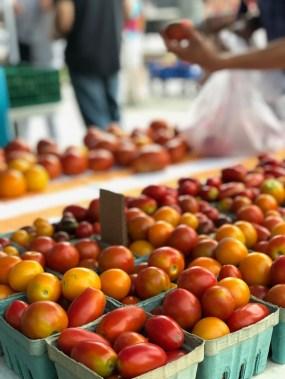 Barrington Farmers Market 2018 - 21