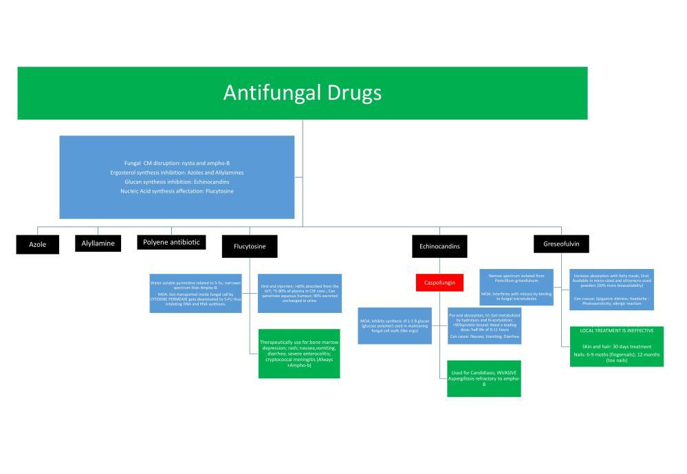 Antifungal Drugs Flowchart (2/2)