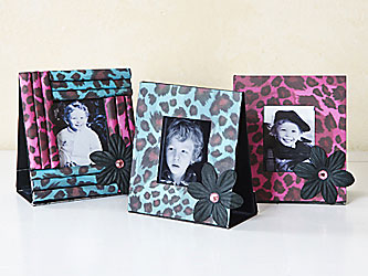 Animal Print Picture Frame Trio