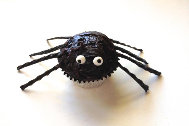 single spider