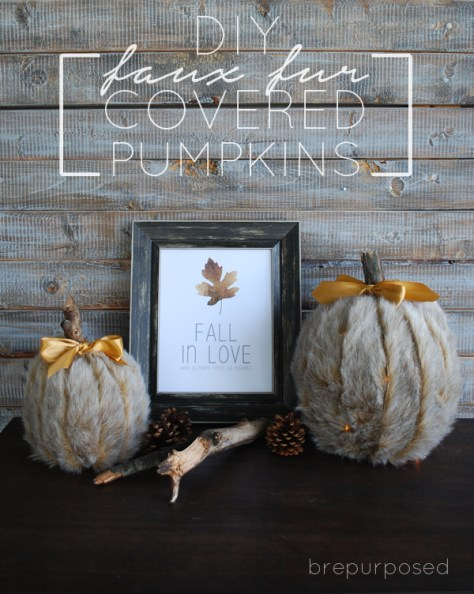 03 - B Repurposed - DIY Faux Fur Covered Pumpkins