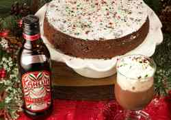 This Peppermint Flourless Chocolate Cake with Kahlua will be the hit of the Christmas party | 365 Days of Easy Recipes