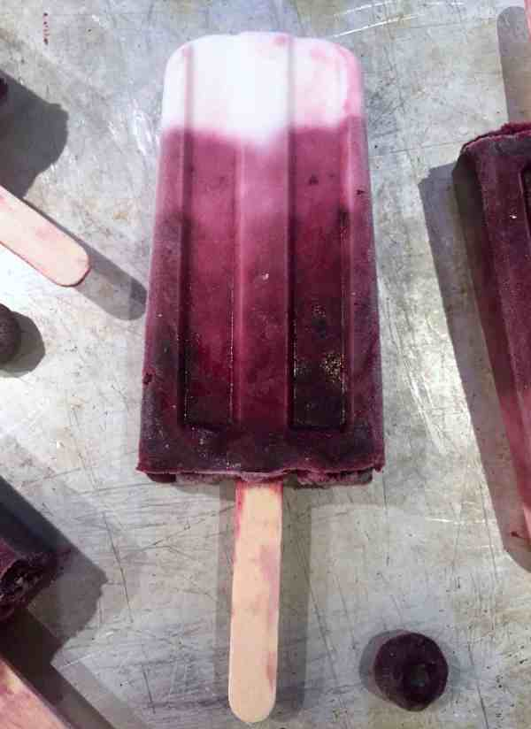 Vegan blueberry & coconut ice lollies