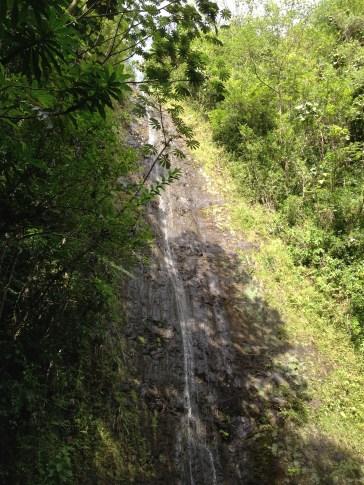 Top of Manoa Falls