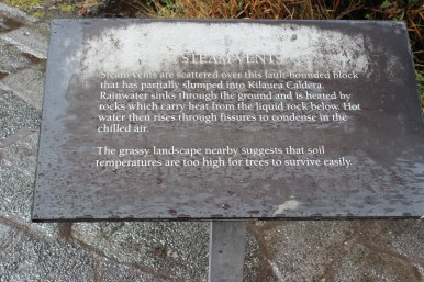 Information about the steam vents.