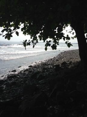 Honoli'i Beach Park Rocks