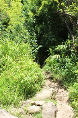 Four Waterfalls Hike 14
