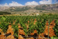 bekaa-valley-lebanon