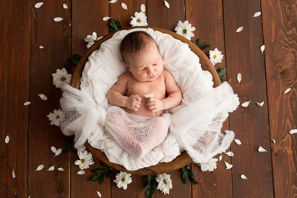 artistic photo of newborns