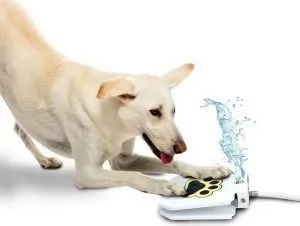 christmas gifts for your dog, Trio Gato's Outdoor Dog Pet Water Sprinkler