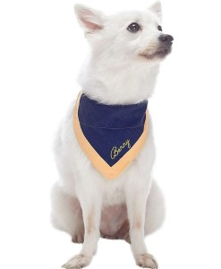 dog gifts, Blueberry Pet Classic Dog Collar Collection2