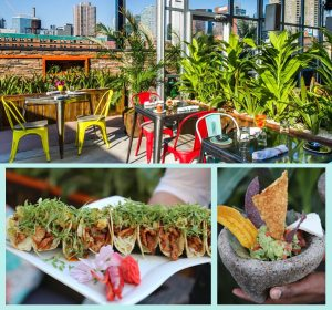 Monica DiNatale 365 Guide New York City NYC Cantina Rooftop