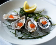 Docks Oyster Bar Happy Hour oysters NYC 365 Guide New York City Monica DiNatale
